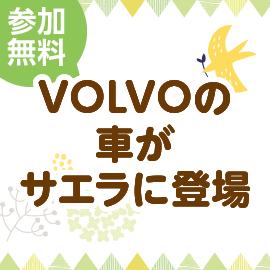 画像:11月6日(土)、7日(日)VOLVOの車がサエラに登場